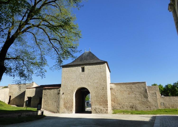 Découverte Du Château De Surgères à Surgeres