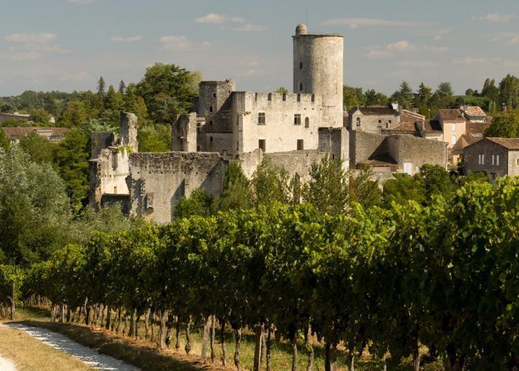 Découverte Du Château Médiéval à Rauzan