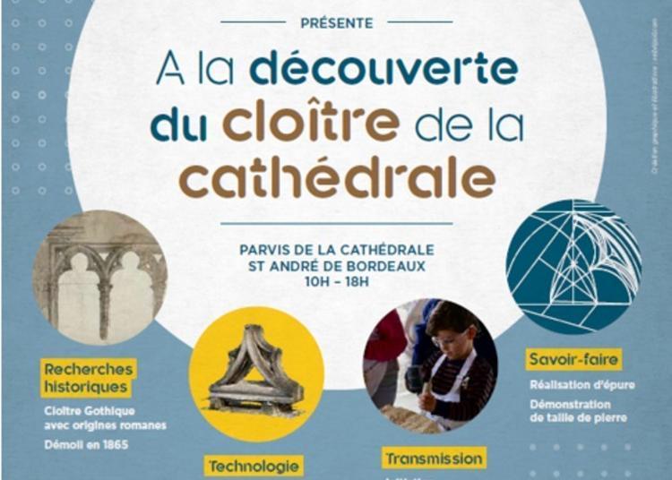 Découverte Du Cloître Disparu De La Cathédrale à Bordeaux