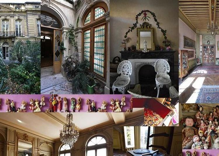 Découverte Du Jardin De L'hôtel De Beaumont, Dit Hôtel Azémar à Avignon