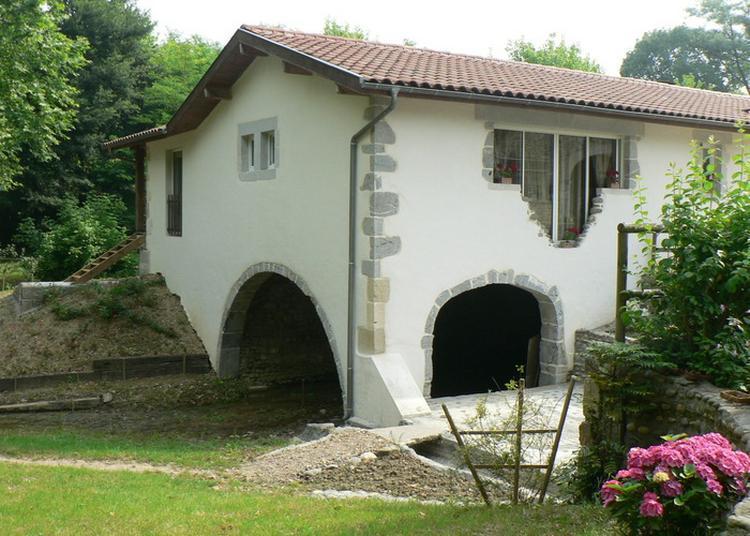 Découverte Du Moulin De Candau à Castetis