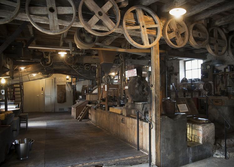 Découverte Du Moulin De La Veyssière, Dernier Moulin À Eau En Activité Sur Le Vern à Neuvic