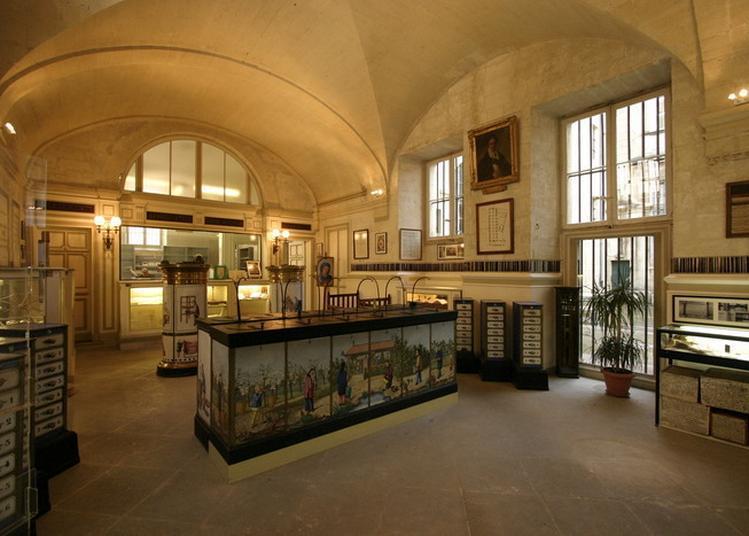 Découverte Du Musée Du Mont-de-piété Et De La Condition-des-soies à Avignon
