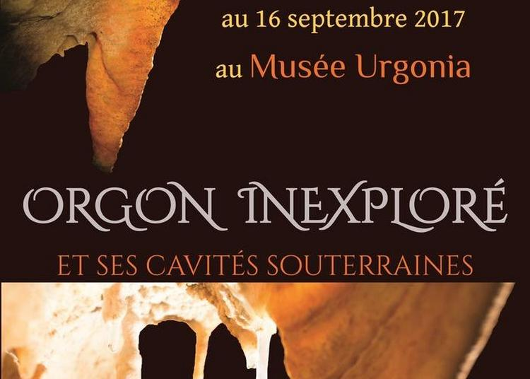 Découverte Du Musée Urgonia À Travers Ses Expositions à Orgon