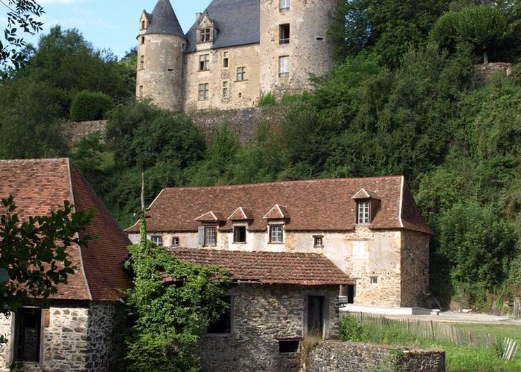 Découverte Du Parc Du Château De Savignac-lédrier à Savignac Ledrier