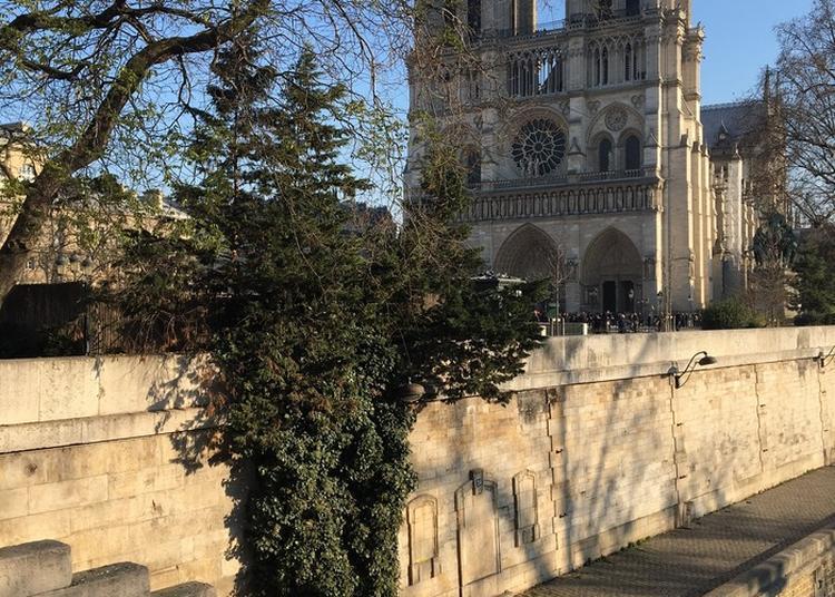Découverte Du Paris Médiéval à Paris 4ème
