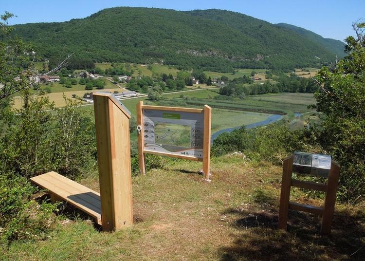 Découverte Du Patrimoine Naturel à L'ens Du Lac De Millieu. à Lhuis