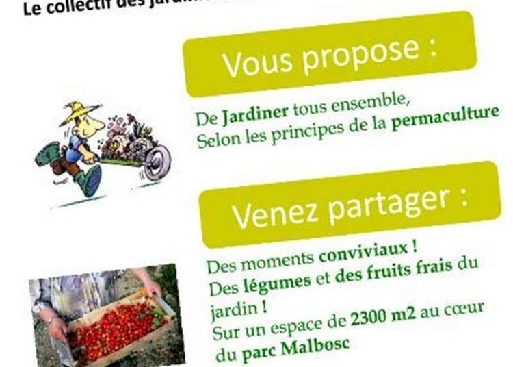 Découverte Du Verger Potager Partagé à Montpellier