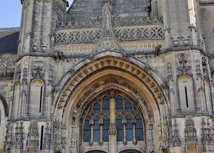 Découverte Et Observation Des Animaux Fantastiques De La Façade De L'église Saint-pierre. à Montdidier