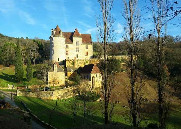 Découverte Guidée D'un Site Médiéval à Castels