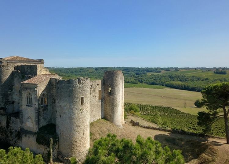 Découverte Guidée D'une Ancienne Forteresse Médiévale à Arbis
