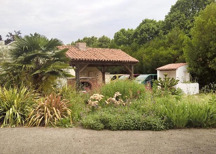 Découverte Guidée De L'arboretum à Saintes