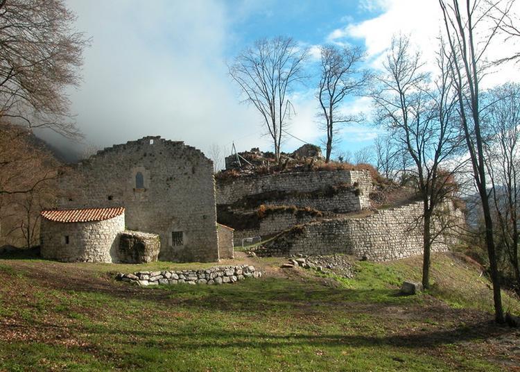 Découverte, Visite Guidée Du Château De Montfort. à Saint Marcel