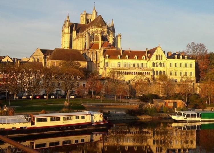 Découvrez L'artisanat D'art Icaunais à Auxerre