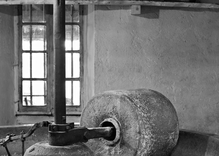 Découvrez La Fabrication De L'huile De Noix Au Moulin Pion-vignon à Bressieux