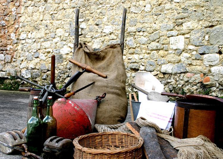 Découvrez La Maison De La Pêche Et De L'eau, Ancien Entrepôt Fluvial Du Xixe Siècle à Nerac