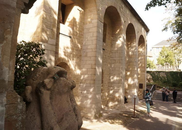 Découvrez Le Cellier De Clairvaux Du Xiiième Siècle - Visite Libre à Dijon