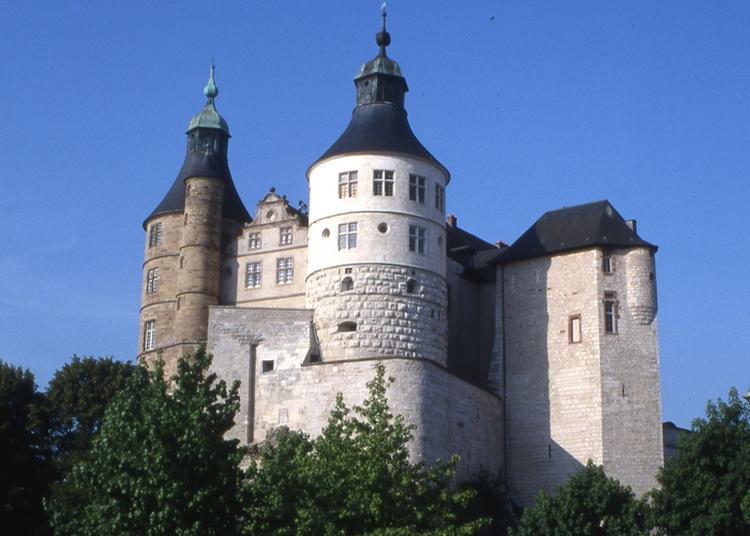 Découvrez Le Musée Du Château Des Ducs De Wurtemberg à Montbeliard