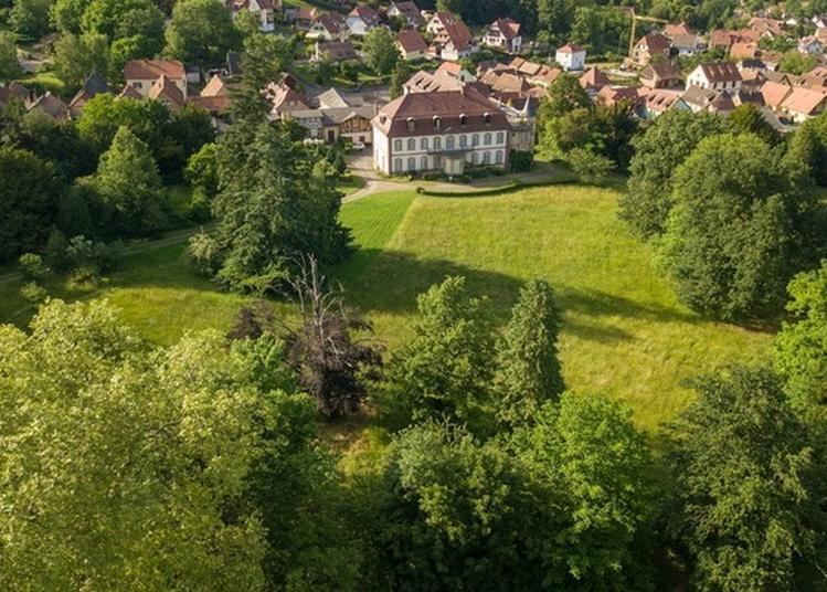 Découvrez Le Parc D'un Domaine Riche D'histoires ! à Ottrott