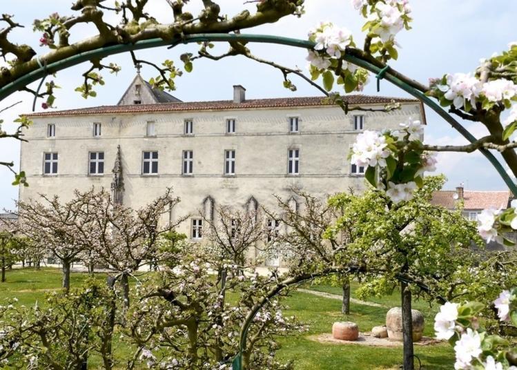Découvrez Le Site Historique Et Paysager De Saint-marc-la-lande à Saint Marc la Lande