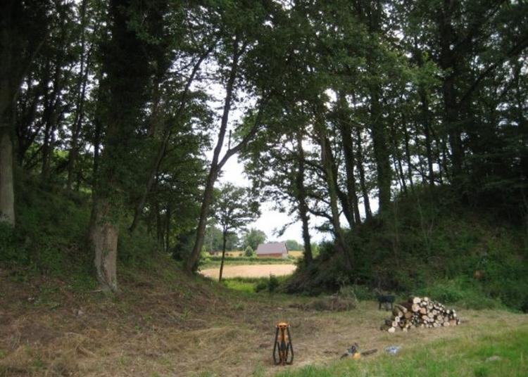 Découvrez Les Mottes Castrales De L'an Mil à Saint Dizier la Tour