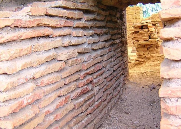 Découvrez Un Site Archéologique à Andilly en Bassigny