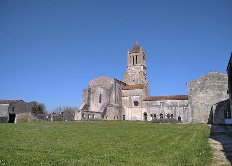 Découvrez Une Abbaye Multicentenaire Et Encore Bien Vivante ! à Sablonceaux