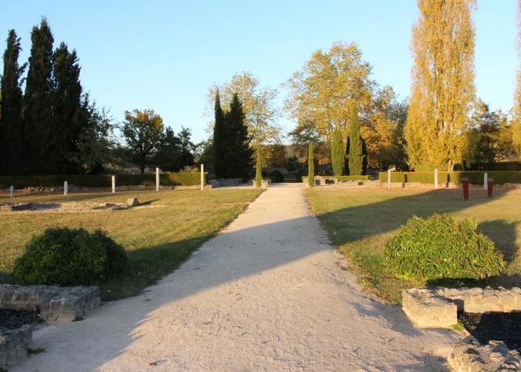 Découvrir Une Villa Gallo-romaine à Montmaurin