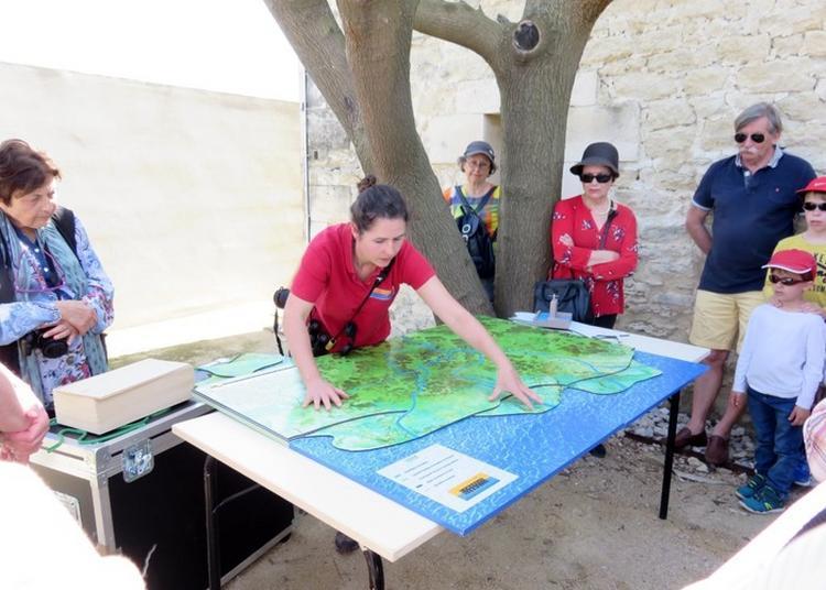 Delta Cam : La Maquette Pédagogique Du Delta Du Rhône à Aigues Mortes