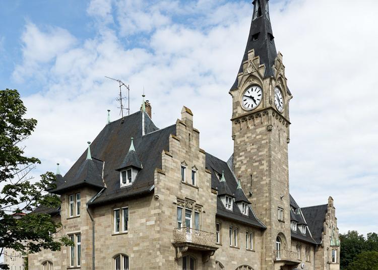 Des Bassins Du Port Du Rhin à Strasbourg