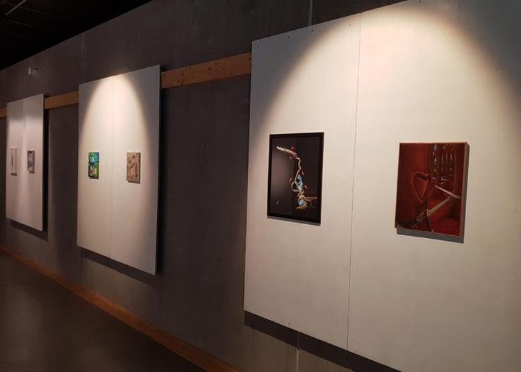 Dessine-moi Un Opinel, Exposition Temporaire à Saint Jean de Maurienne