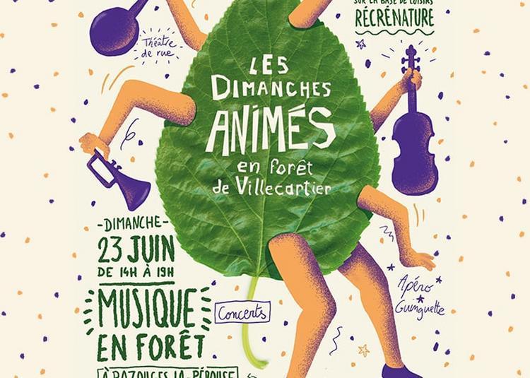 Dimanches Animés - Musique en forêt 2019