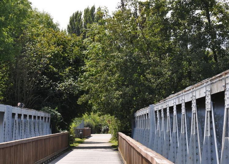 Direction Gien à Auxerre