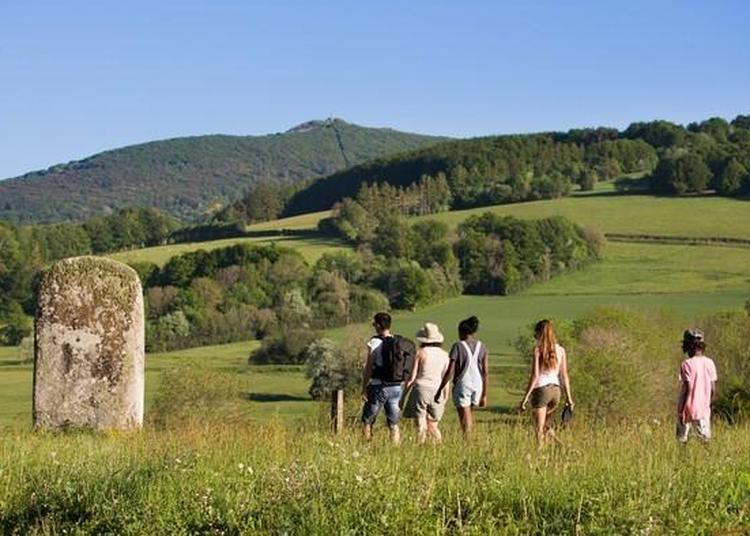 Divinités Muettes : Visite Et Circuit Commentés Sur Les Statues-menhirs à Murat sur Vebre