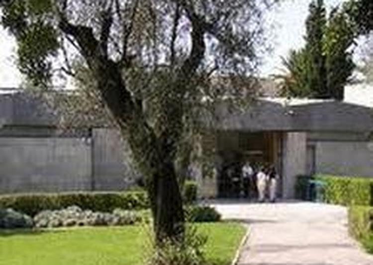 Droit D'entree -musée Marc Chagall à Nice