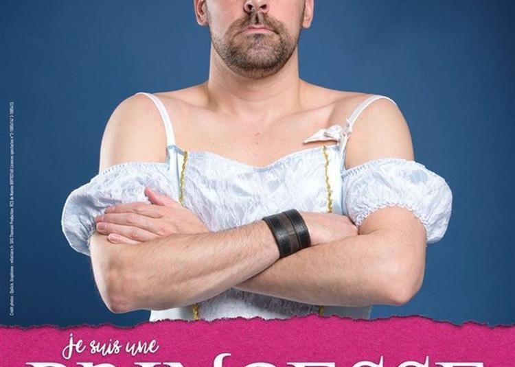 Drôle De Soirée By Nilson : Kenny Dans Je Suis Une Princesse... à Nantes