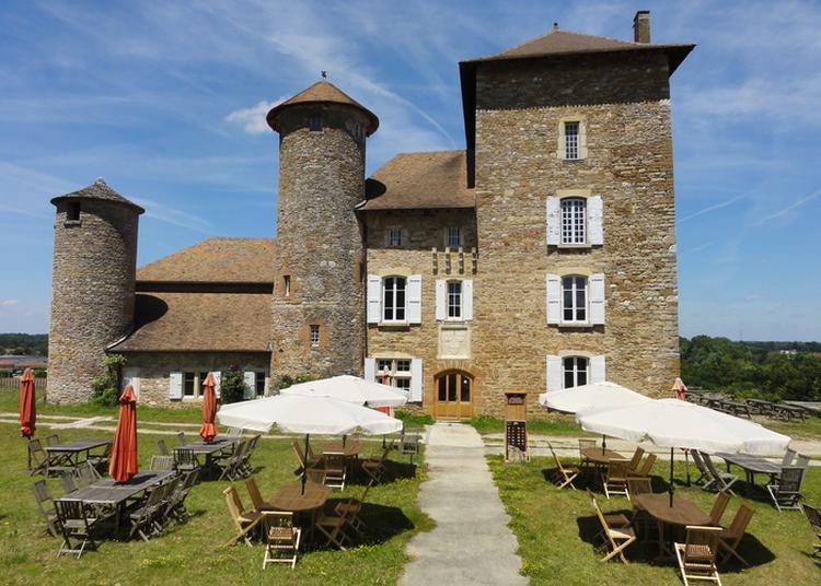 Du Musée Des Minéraux Au Château Templier à Villemoirieu