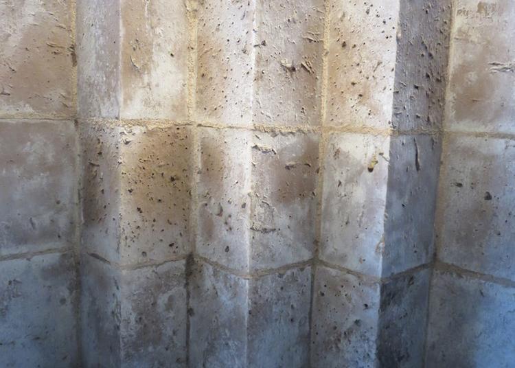 Du Roman Au Gothique : La Science Des Bâtisseurs à Bourges