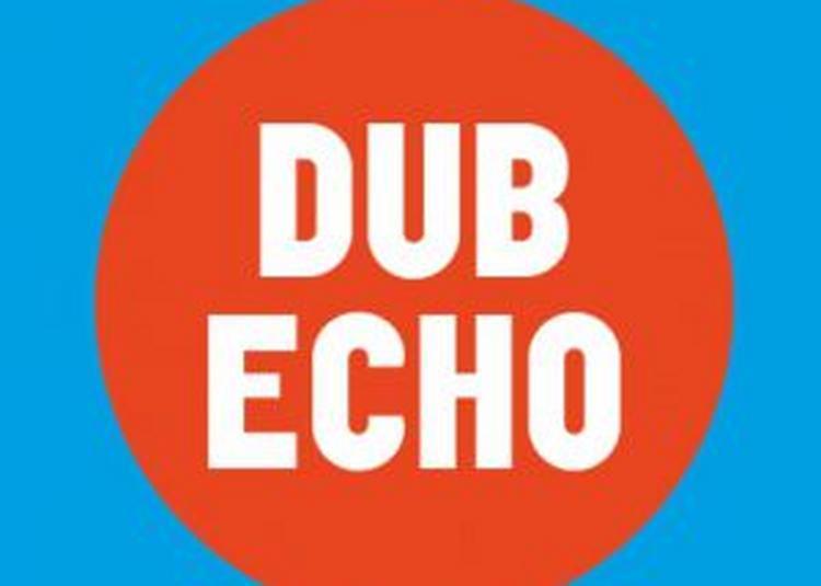 Dub Echo #15 à Villeurbanne