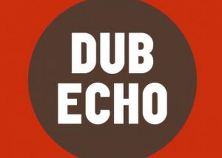 Dub Echo #16 à Villeurbanne