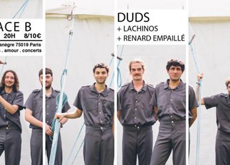 Duds / Lachinos / Renard Empaillé à Paris 19ème
