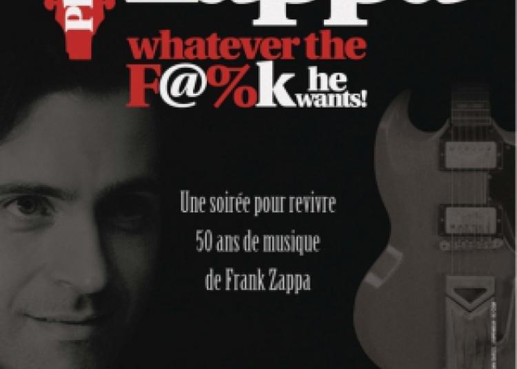 Dweezil Zappa : 50 Years Of Frank à Paris 18ème