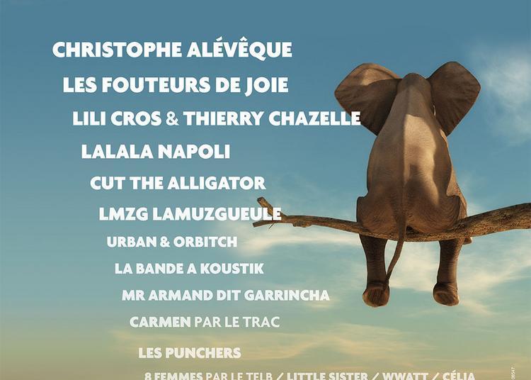 20e Festival Après les Vendanges 2019