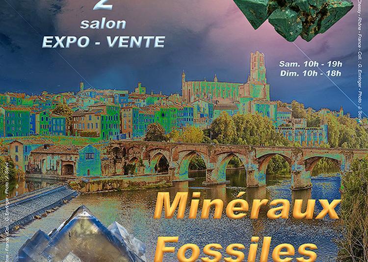 2e Salon Minéraux Fossiles Bijoux à Albi
