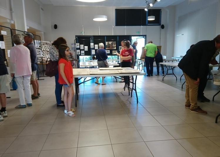 Échange Café Autour D'archives De Rogny-les-sept Écluses à Rogny les Sept Ecluses