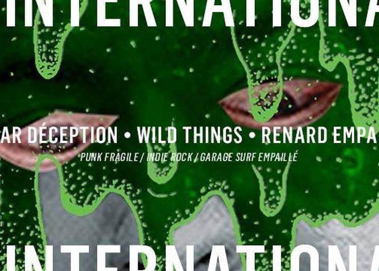 Edgar Déception - Wild Things - Renard Empaillé - Bob Cooper à Paris 11ème