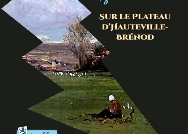 Edition Du Livre Regards D'artistes Sur Le Plateau D'hauteville-brénod Par L'association Le Dreffia à Champdor
