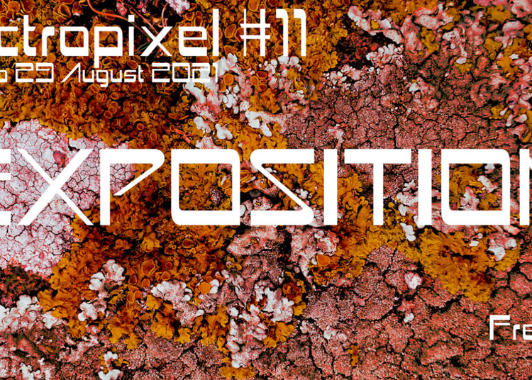 Electropixel #11 Out Of Matter à Nantes