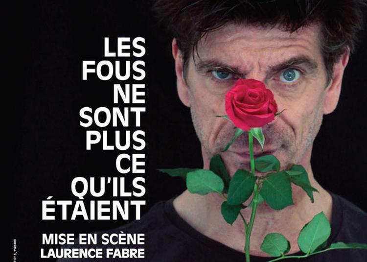 Elliot Jenicot - Les Fous Ne Sont à Avignon