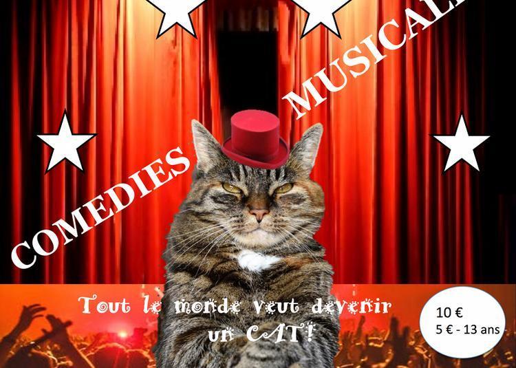7ème gala de comédies musicales à Conchy les Pots